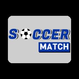 Soccer Match Custom Coins