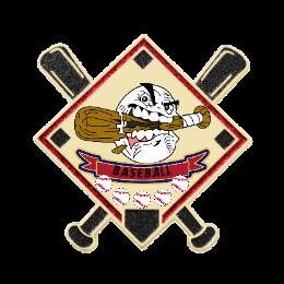 2020 Bulldog Custom USA Trading Pins