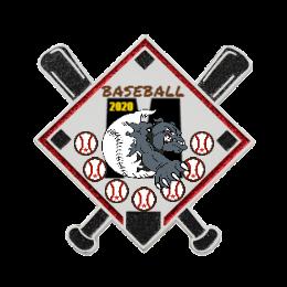 2020 Baseball Team Trading Pins