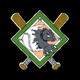 Fine Baseball USA Custom Trading Pins