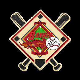 Baseball Team Custom Trading Pins