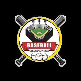 Championship Baseball Pins Made In USA