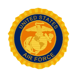 Air Force Military Lapel Pins