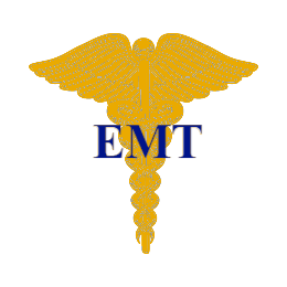 EMT Lapel Pins