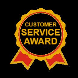 Customer Service Award Lapel Pins