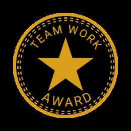 Team Work Award Lapel Pins