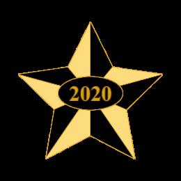 2020 Star Custom Award Pins