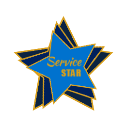 Service Star Lapel Pins