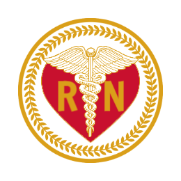 Nursing Custom Lapel Pins
