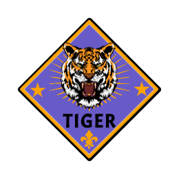 Custom Tiger Patches