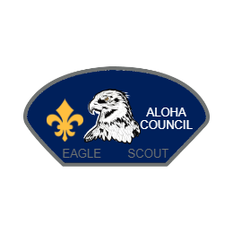 Eagle Scout Custom Nice Patches